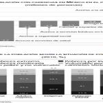 Aguascalientes es líder en materia crecimiento de patrones registrados ante el IMSS