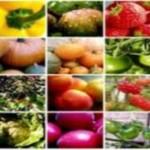 En clara ascendencia fortaleza agroalimentaria de la entidad