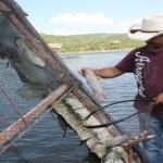 La SAGARPA  dará un mayor impulso a la acuacultura en Aguascalientes