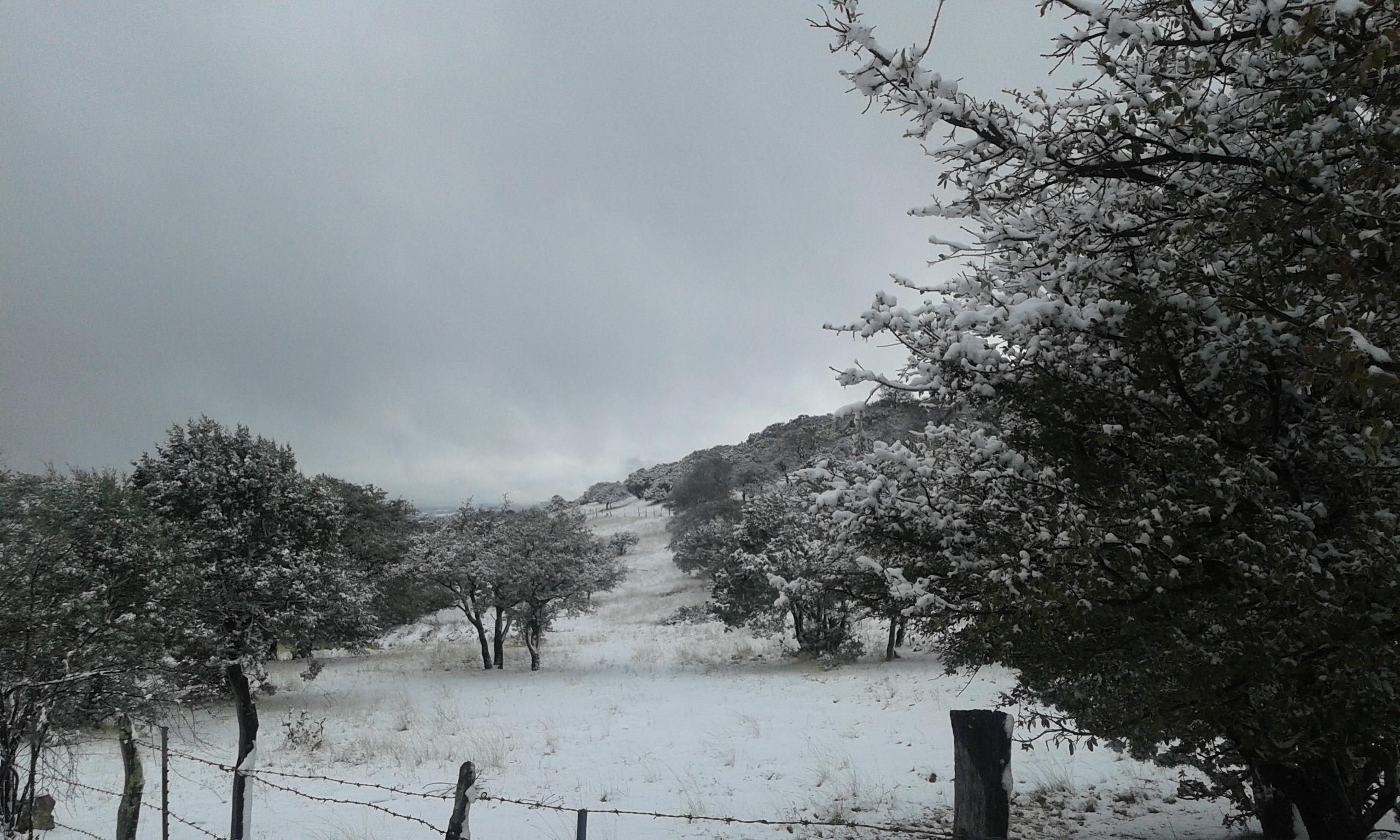 nevada sierra fría san josé de gracia ags_9mar2016 (4)
