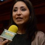 DIPUTADA PALOMA AMÉZQUITA PROPONE INICIATIVA PARA QUE MENORES RECIBAN ATENCIÓN PSICOLÓGICA EN PROCESOS DE DIVORCIOS