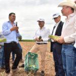 FORTALECE GOBIERNO DEL ESTADO PROYECTOS PRODUCTIVOS DEL CAMPO CON UN FONDO DE 10 MDP