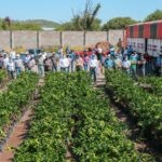 El fortalecimiento del campo de Calvillo es producto de la coordinación institucional y el esfuerzo de los productores