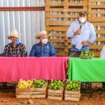 Los gobiernos estatal y municipal respaldan a los productores de limón en Calvillo